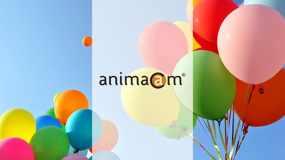 ¡Bienvenid@ a la VI edición de Animacam!
